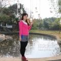 枫叶塘,美食摄影