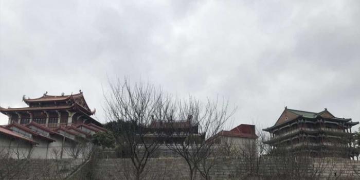 梅峰寺梅花在哪里,我只看到光溜溜的树枝