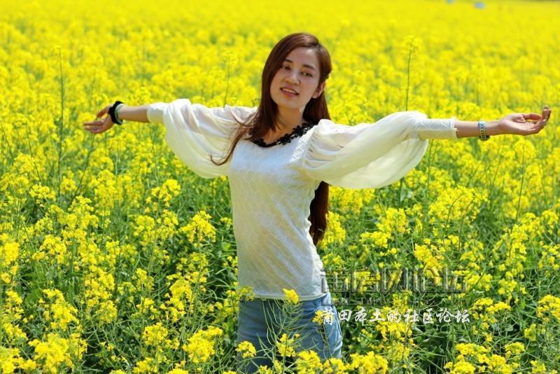 【我和春天有个约会】莆房网坪盘,澳柄赏花踏青看美女