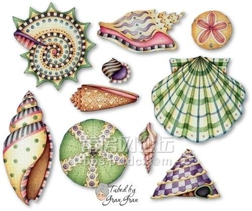 创意绘画:海滩上的贝壳