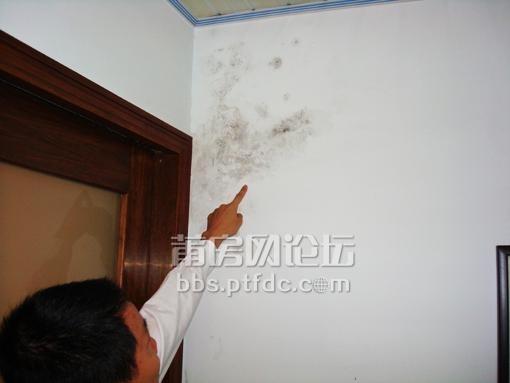 幼儿园墙壁刷漆颜色搭配