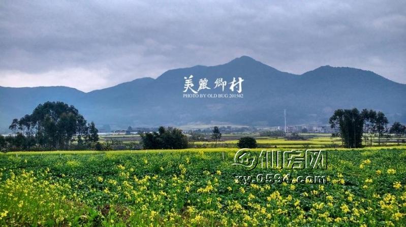 莆田市涵江区湄洲岛风景