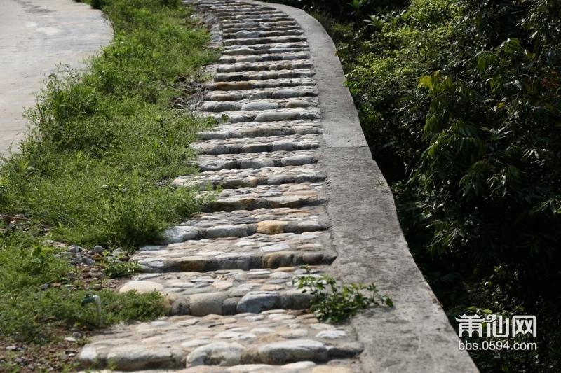 旁侧石磴路