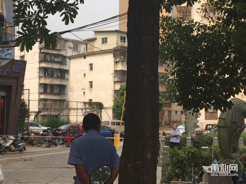 涵江荔州情迷有别墅城管拆除v情迷广告牌曼by》光《、别墅正在图片