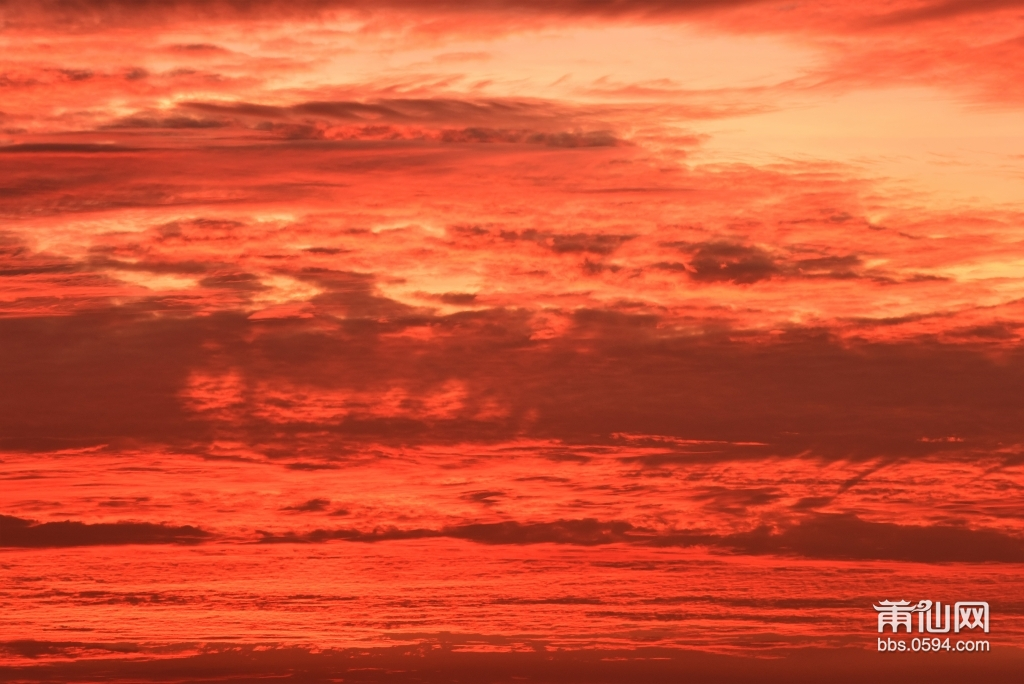 会展中心海边看日出