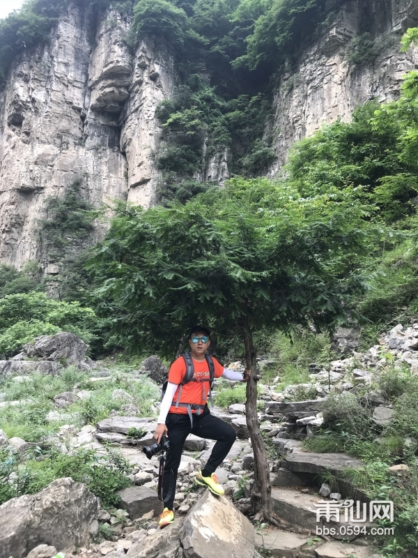 南方红豆杉是中国亚热带至暖温带特有成分之一,在阔叶林中常有分布。耐荫树种,喜温暖湿润的气候,通常生长 ...